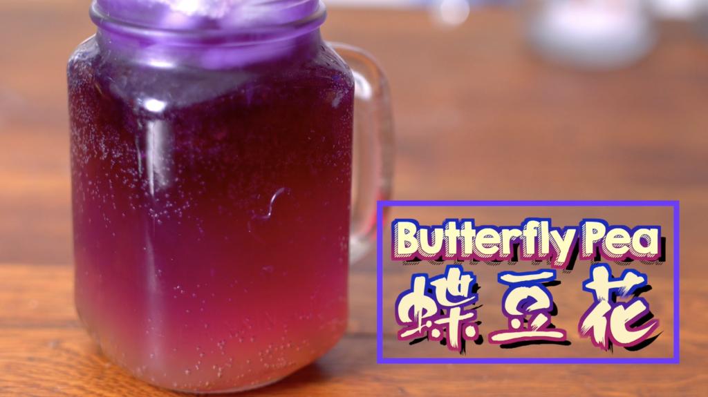 蝶豆花 Butterfly Pea